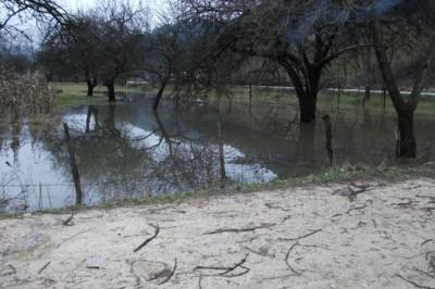 80 de gospodarii afectate de inundatii