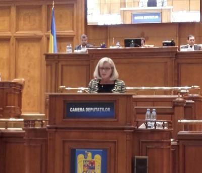 Cornelia Negruț: Actualul Guvern trebuie să aducă plus valoare pentru economie