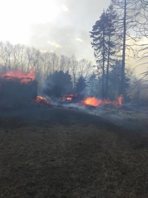 Incendii la Valea Chioarului, Borşa şi Copalnic