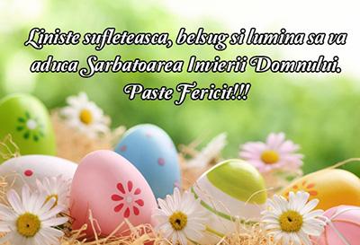 felicitare_paste