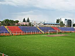 ANAF scoate un stadion la vânzare