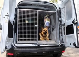 transport caine politist