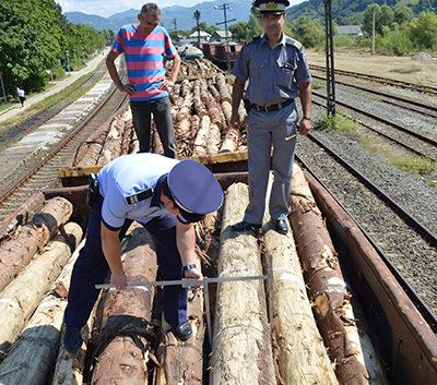 1 transport lemne