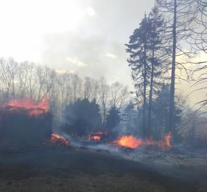 Incendiu la Valea Chioarului. Gospodarul amendat de pompieri