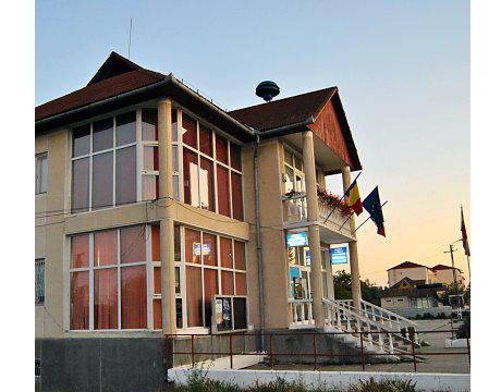 1.215 de voturi – diferența dintre PSD și PMP, la Ulmeni