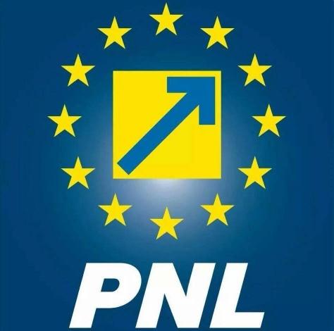 Turcan: PNL poate guverna responsabil