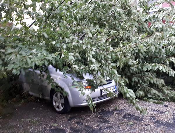 Furtună în Maramureș