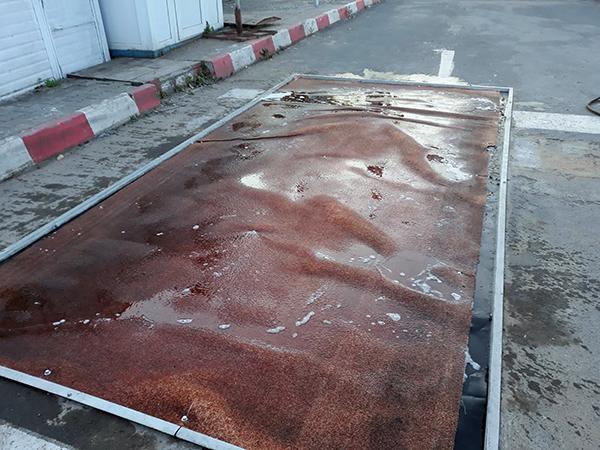 Pesta porcină: Filtru de dezinfecție rutier și pietonal