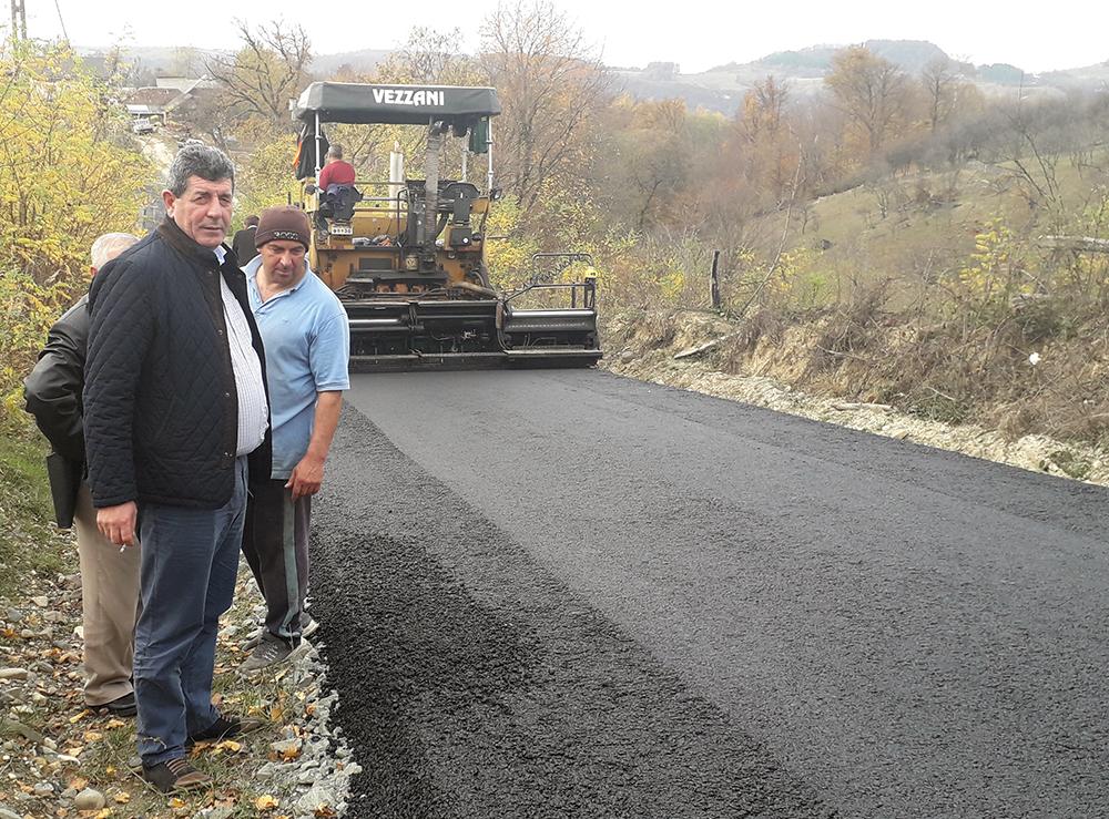 asfalt codru