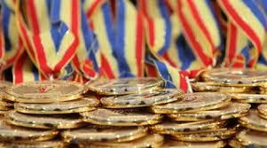 Premii de la CJ pentru elevii olimpici