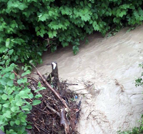 Pagube la Şomcuta după ploile abundente