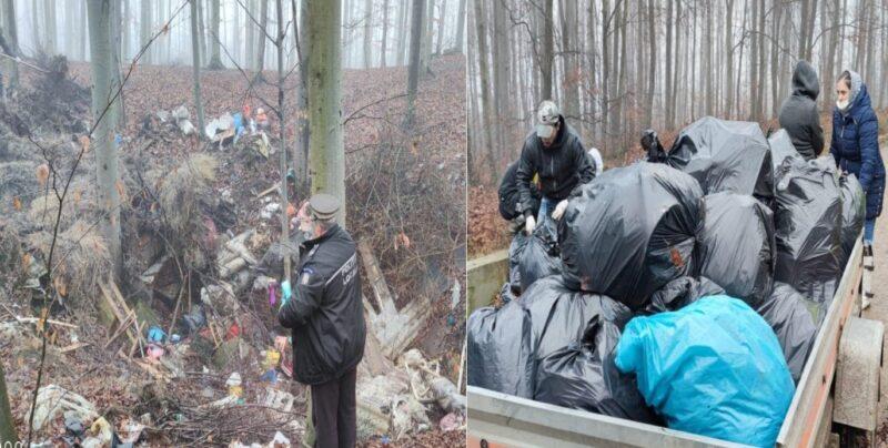 Hovrileni sancționați pentru deșeuri aruncate în pădure