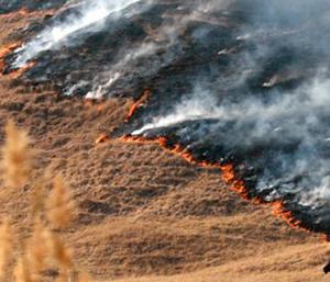 Incendii pe sute de hectare de teren