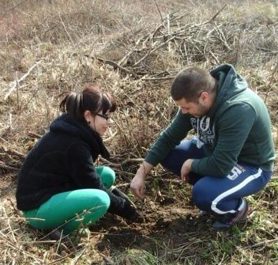 Acţiune de împădurire organizată de femeile din OFSD Şomcuta Mare