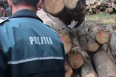 Furt de lemne reclamat de o femeie
