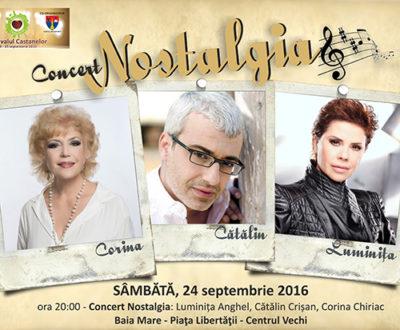 """Zetea: CJ este co-organizator al concertului """"Nostalgia"""" la Festivalul Castanelor"""