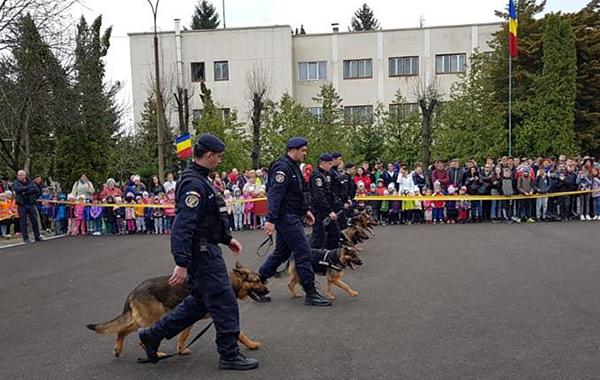 Exerciții demonstrative la Jandarmerie de Ziua Porţilor Deschise
