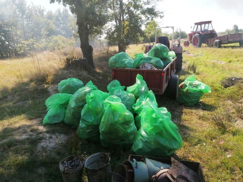 Simţ civic la Finteuşu Mare: Zeci de saci de deşeuri – adunaţi din pădure de către tineri